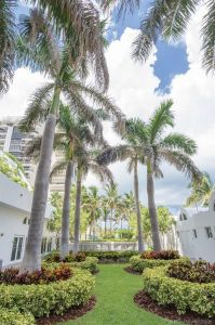 6365 Collins Ave #1007 photo042
